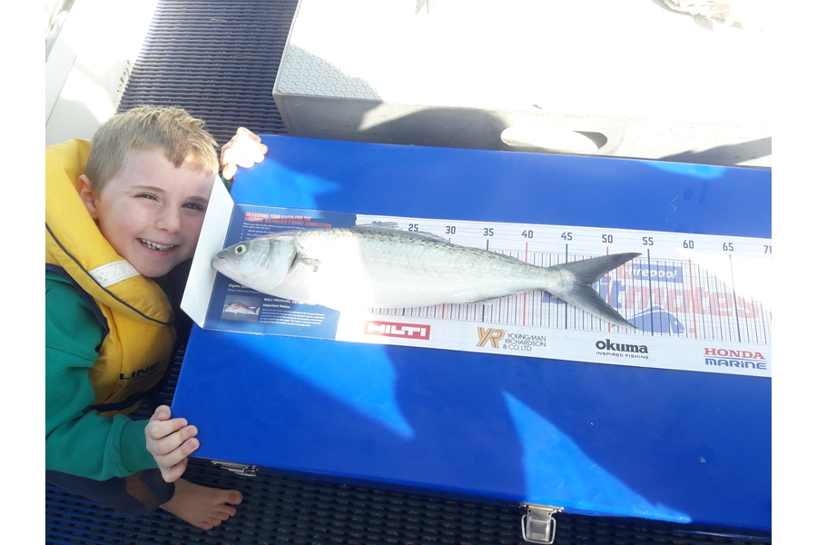 Luca Ralph caught this 47.5cm Kahawai at Waiheke   during The DB Export NZ Fishing Competition